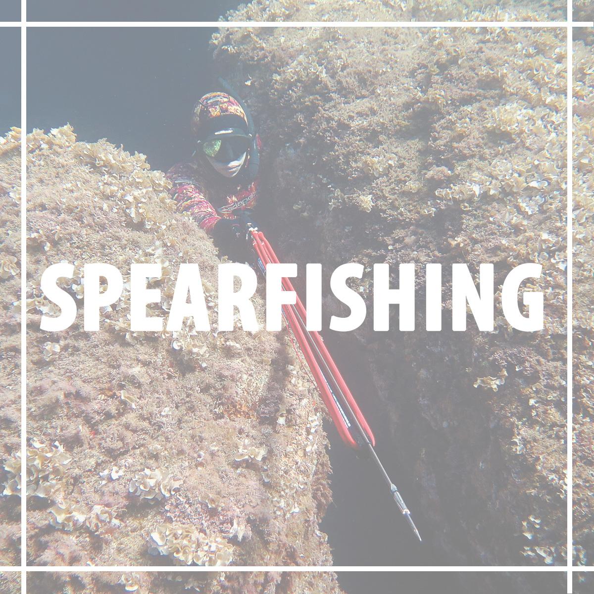Splash Dive Australia Supplies Scuba, Spearfishing